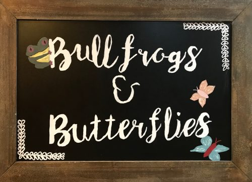 bullfrogs-and-butterflies-childcare-center